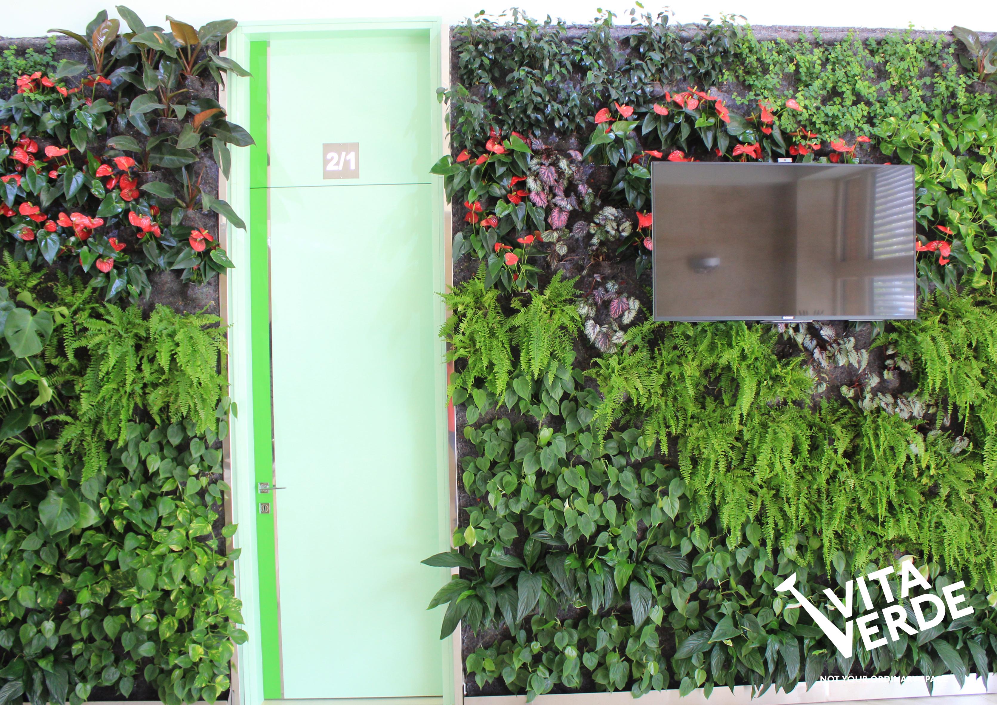 Vertical garden Vitaverde