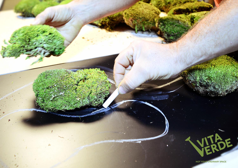 Moss art creation