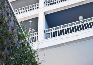 Makedonia Palace vertical garden